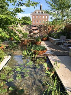 Chelsea Flower Show 2018: The Silent Pool Gin Garden – The Frustrated Gardener