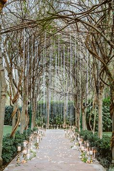 This aisle decor from is some serious ceremony goals! Featured on . Wedding Scene, Wedding Games, Wedding Venues, Wedding Coordinator, Wedding Planner, Wedding Designs, Wedding Styles, Wedding Ideas, Chuppah