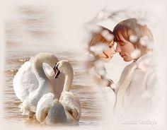 все стихи о крыльях любовь это два крыла когда полюбили двое: 21 тыс изображений найдено в Яндекс.Картинках