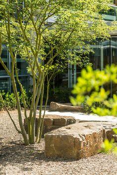 Wershofen garden design boulders and rock pear school atrium 16