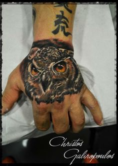 owl portrait by christos galiropoulos