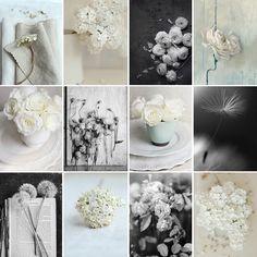 Photography by Sarah Gardner http://sarahgardnerphotogrphy.blogspot.co.uk