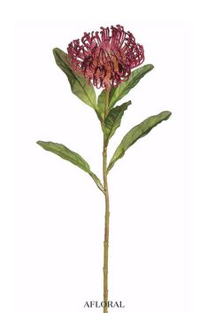 Plastic Open Needle Protea Spray in Burgundy Bloom x Tall Tropical Wedding Bouquets, Red Wedding Flowers, Fake Flowers, Flower Bouquet Wedding, Silk Flowers, Wedding Greenery, Wedding Colors, Tropical Artificial Flowers, Tropical Flowers