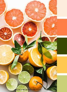 Uplift the senses with Sunny Citrus fragrance oil from Air Esscentials! This tangy, tart citrus scent turns any area into a celebration of sparkling freshness. Orange Color Palettes, Paint Color Palettes, Colour Pallete, Color Combos, Color Schemes, Tropical Colors, Find Color, Paint Colors For Home, Colour Board