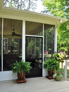 Plan to clean up screened in porch area. Love the plants!