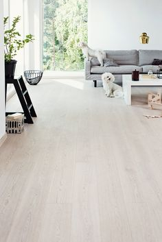 This amazing photo is certainly an amazing style principle. Types Of Hardwood Floors, Timber Flooring, Home Room Design, Living Room Designs, House Design, Grey Wooden Floor, Wood Plank Tile, Contemporary Living Room Furniture, Engineered Hardwood
