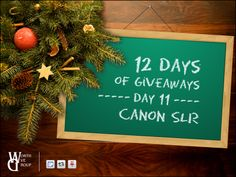 Time for Day 11! Today's giveaway from Worth Ave. Group is a Canon SLR.