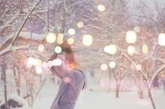 winter, lights, snow, holiday, photography