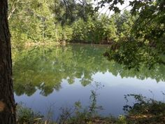Beautiful, Rolling +/-64 Acre Farm in 4 Tracts selling Thursday, September 26th, 2013 at 6:07 PM; Located at 6821 Symsonia Highway, Symsonia, KY; Open Fields, Excellent Pasture, Tillable Ground, Outstanding Home Sites, 400ft Road Frontage; Pretty, Stocked Spring-Fed Pond; Year Round Water Trough
