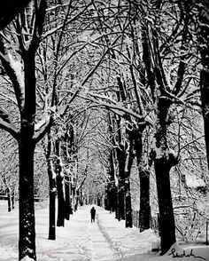 Winter Scene, by Josef Sudek Josef Sudek, Photocollage, Plein Air, Pictures To Paint, Winter Scenes, Black And White Photography, Winter Wonderland, Most Beautiful Pictures, Photo Art
