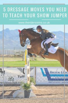 Any good show jumping horse will be taught dressage too. Here are 5 dressage moves that will improve your show jumping competitions. Show Jumping Horses, Show Horses, Horse Riding Tips, My Horse, Horse Exercises, Horse Care Tips, Equestrian Outfits, Equestrian Fashion, English Riding