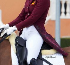 "dressageworkingstudent: "" blondieinbreeches: "" On a side note…. Obsessed with this tailcoat too all credits go to Lily Forado "" The lining is soooo good. """