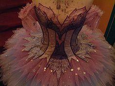 Cinderella tutu. Royal ballet. Looks more like a lilac fairy tutu.