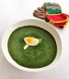 Brenneslesuppe Ethnic Recipes, Food, Essen, Meals, Yemek, Eten