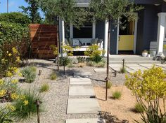 Newport Beach, Landscape Design, Garage Doors, Sidewalk, Yard, Patio, Outdoor Decor, Home Decor, Decoration Home