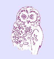owls.