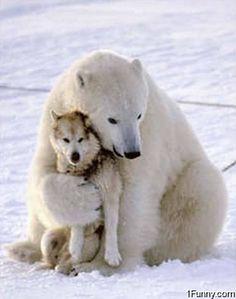 Freundschaft kennt keine Grenzen ;)