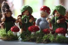 http://www.rosenrot-blumenkinder.de/neuigkeiten.html