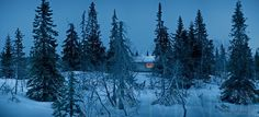 Photo by Jeff Maion #Arcticshooting #finnishlapland Riisitunturi, Posio, Lapland, Finland, Scandinavia, Nordic countries, Europe - National Park, Arctic Winter night falling on wilderness hut