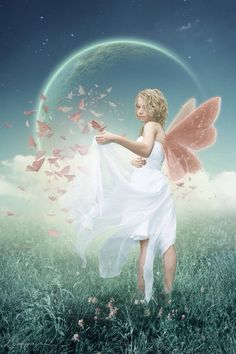 Pink-winged crescent moon fairy