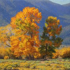 """""""Valley Cottonwoods,"""" Charles Muench, 24x24, oil on linen"""