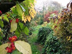 Hammfiction: Herbstzauber