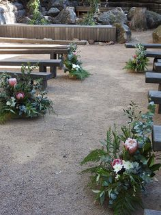 Ceremony aisle, planter boxes with natives and greenery ideal for creating some colour and wow in a bush setting at Planter Boxes, Planters, South Coast Nsw, Wedding Isles, Special Day, Greenery, Wedding Ceremony, Backdrops, Wedding Flowers