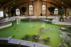 Submerged furniture in the swimming pool in Mike Tyson's abandoned mansion in Ohio.    Photo credit: Mike Adams