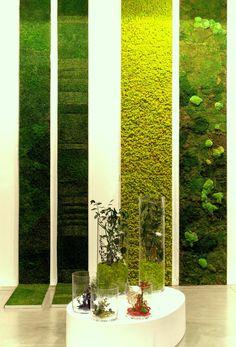Вертикальное озеленение (58 фото) - интересный способ экономии пространства http://happymodern.ru/vertikalnoe-ozelenenie-58-foto-interesnyj-sposob-ekonomii-prostranstva/ Вертикальное озеленение в квартире с использованием мха