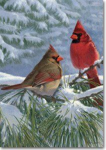 Winter Lights Cardinals Winter House Flag by Windswept