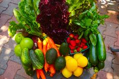 The CSA boxes are guaranteed to be fresh and flavorful.  We gladly provide replacements whenever necessary. Order your subscription today and start receiving a box of farm fresh produce within a week or two.