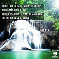 Dios es nuestro manantial de vida eterna.