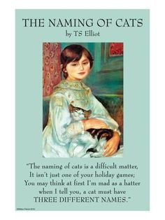 """All my cats get three names! Illustrated by Pierre-August Renoir in the painting, """"Julie Manet with Cat""""; Thomas Stearns Eliot OM, 1888 was an American-born English poet, playwright, and literary critic. Crazy Cat Lady, Crazy Cats, Animals And Pets, Cute Animals, Illustration Art Nouveau, Cat Quotes, All About Cats, Cat Names, Cat Life"""
