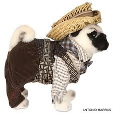 Versace, Pucci, Blumarine, são algumas marcas envolvidas na campanha 'Pug Dogs for Happy Kids', em prol da UNICEF.