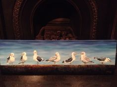 Seagulls of Coogee. Original oil painting by Georgina Michalandos of seagulls enjoying the view of Coogee beach.