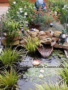 A great little small garden pond.  http://www.your-garden-ponds-center.com/#