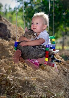 too cute...a boy and his cat on his swing..luv this pic