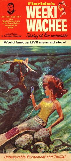 Here's the seventh of our top 10 for Halloween. Inspired by items in the Museum of Florida History. A mermaid inspired by the world famous mermaids at Weeki-Wachee! Florida Girl, Old Florida, Vintage Florida, Florida Vacation, Florida Travel, Beach Travel, Vintage Mermaid, Mermaid Art, Mermaid Lagoon