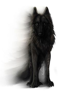 This is the bloodThirst Pack Leader. Scar, he's the most dangerous wolf ever. mess with him say good bye to your little wolf life ): He attacked my sister one day. never going to forget that ; Anime Wolf, Wolf Tattoos, Wolf Tattoo Back, Wolf Spirit, Spirit Animal, Fantasy Wolf, Fantasy Art, Fantasy Creatures, Mythical Creatures