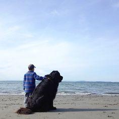 10 Adorable Pictures Between A Boy And HisDog (A Newfoundland Retriever).