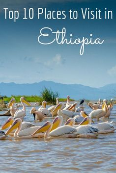 Ethiopia: Ten Amazing Places Not to Miss : Ethiopia is an incredibly diverse country with tribes unchanged for thousands of years, carved stone churches, amazing people and a stunning landscape. Ethiopia Travel, Africa Travel, Africa Destinations, Travel Destinations, Travel With Kids, Family Travel, Uganda, Addis Abeba, Places To Travel