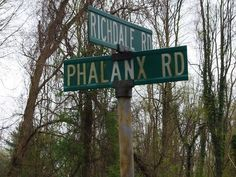 Weird NJ: Haunting encounter on Phalanx Rd. Colts Neck, NJ
