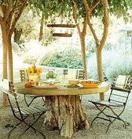 Make a table out of a tree stump! Cool!