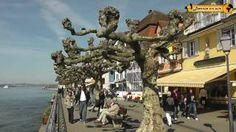 88682 Salem-Neufrach, #bodensee Schönheiten von Meersburg am Bodensee - #urlaub
