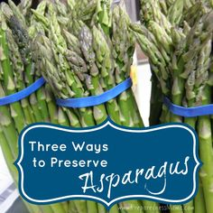 There are several ways to preserve your asparagus for the long and dreary winter months. You'll be glad you learned 3 ways to preserve asparagus while you can get it fresh. Canning Asparagus, Freezing Asparagus, Pickled Asparagus, Canning Vegetables, Fresh Asparagus, Asparagus Recipe, Veggies, Asparagus Spears, Home Remedies