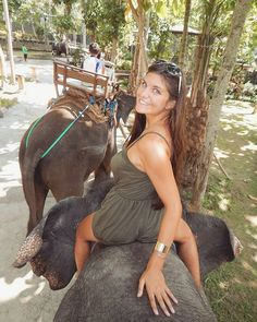 Bali Elephant Park #asia #indonesia #bali #ubud #travel #elephant #elephantpark…