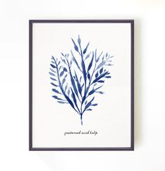 """Coastal Art - Seaweed  - Buy 2 get one free 