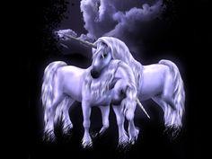 unicorn | Download Unicorn wallpaper, 'unicorns' .