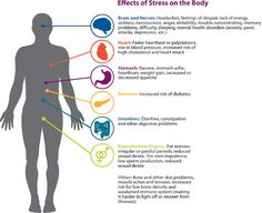 How Stress affects the body..