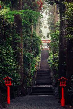 hakone, torii gate to temple Japanese Shrine, Japanese Temple, Aesthetic Japan, Japanese Aesthetic, Japanese Landscape, Fantasy Landscape, Magic Places, Art Japonais, Japan Photo